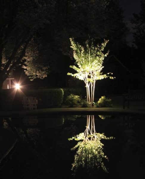 Madlinger Exterior Design led up lighting of tree with reflection on pool in hunterdon county new jersey-min
