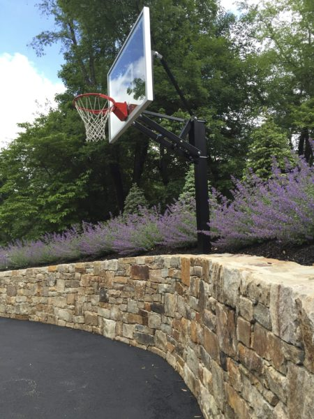 Madlinger Exterior Design natural stone retaining wall with Nepeta Walkers Low growing above the wall with a basketball net in Basking Ridge New Jersey-min