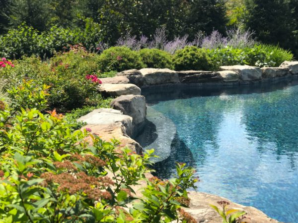 Lush plantings behind natural boulder pool in Basking Ridge, New Jersey